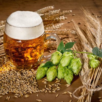 23rd April 1516: The Reinheitsgebot beer purity law first introduced in Bavaria
