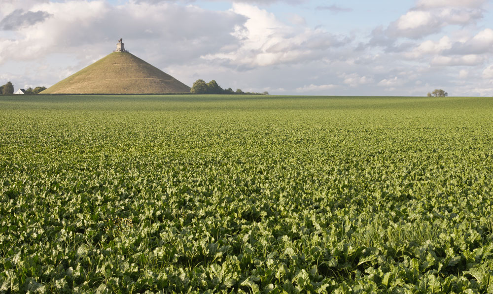 18th June 1815: Napoleon Bonaparte defeated at the Battle of Waterloo   HistoryPod