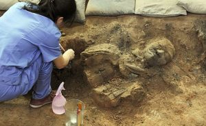 Excavation of the Terracotta Army